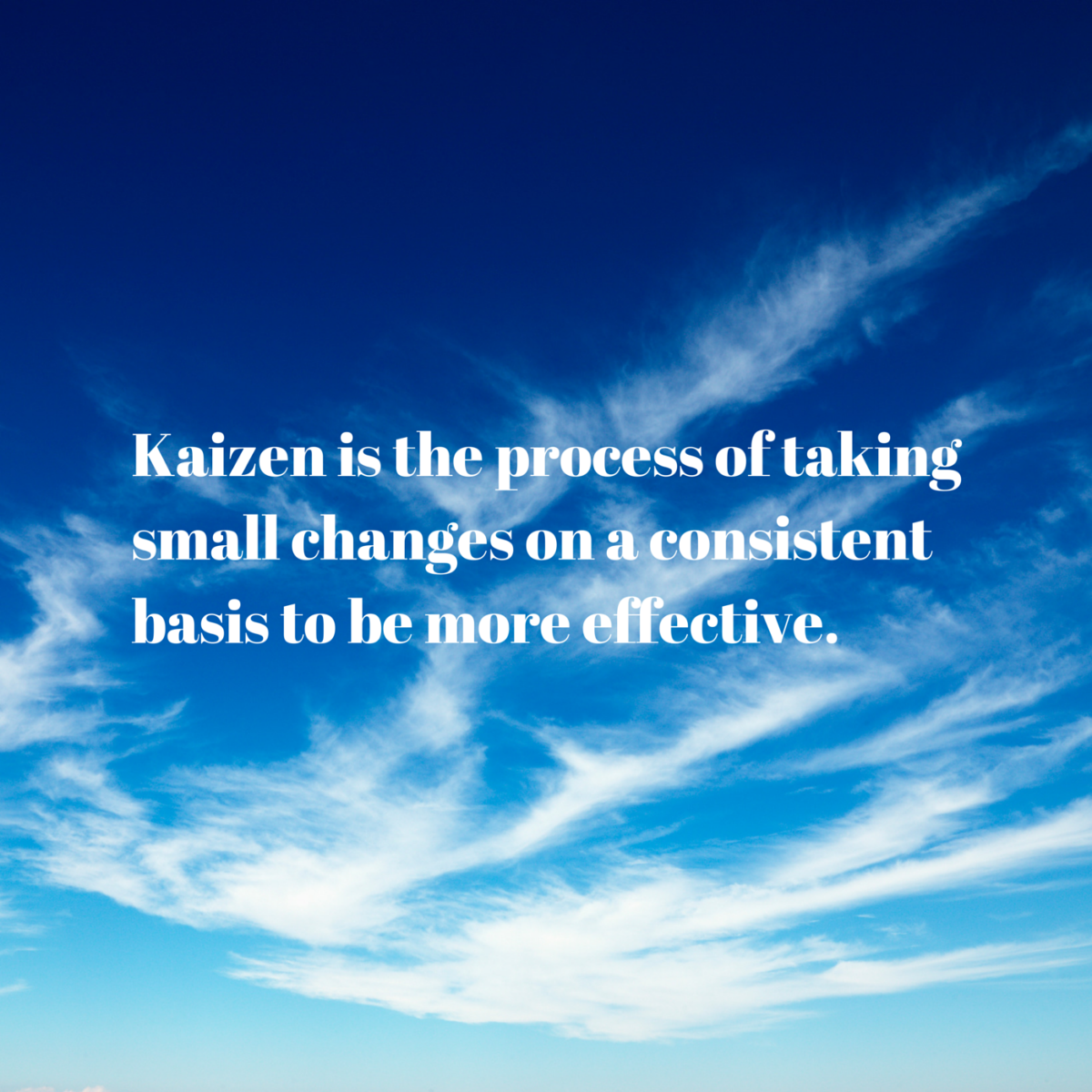 The Kaizen Way with Sally Reinholdt
